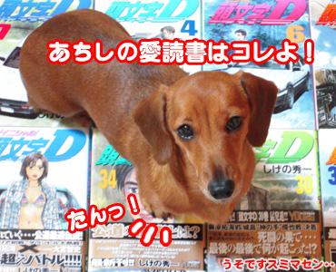 Akane_aidokusho