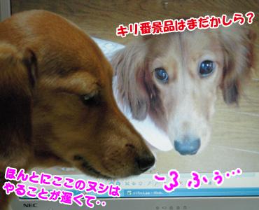 Akane_mei3