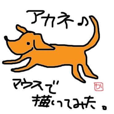 Kgahaku