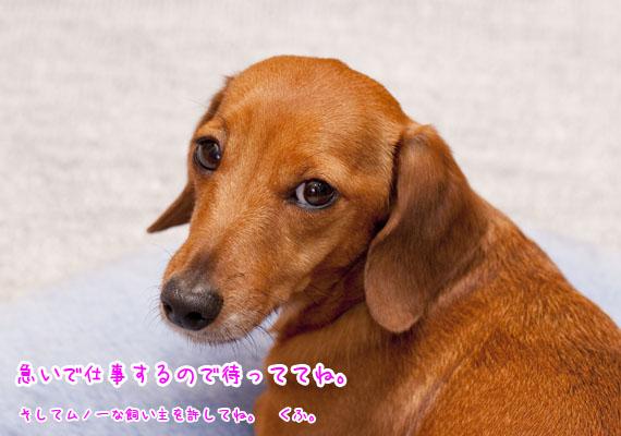 Akane_0704