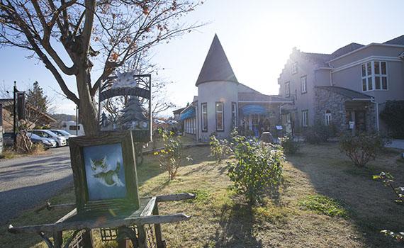 Fuji15_03c